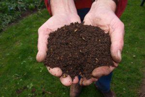 Frais, Compost, Main, Homme