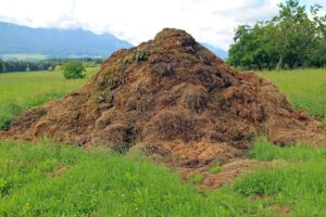 Bouse, Tas De Compost, Point De Ralliement, Merde
